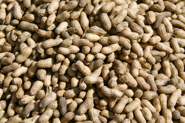 groundnuts on display at local market