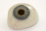 Prosthetic eye poster