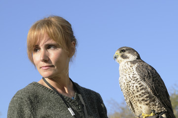 Falconer with Peregrine Falcon