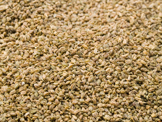 A close up on a pile of dried Celery Seed.