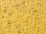A close up on a pile of Poultry Seasoning. poster