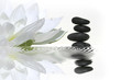 Leinwandbild Motiv vibrations zen