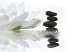Fototapety vibrations zen