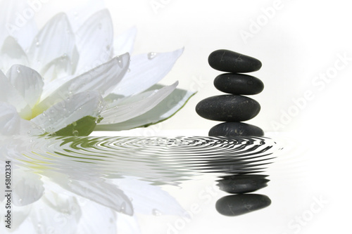 Leinwanddruck Bild vibrations zen
