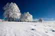 Winterlandschaft 61