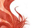Fototapety cheveux