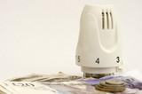 Thermostatic radiator valve saves you cash poster