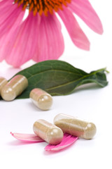 Echinacea extract pills and fresh Echinacea flowers