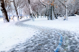Winter park and recreational trail covered with snow.  poster