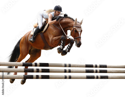 show jumping /stylized by oil painting/ - isolated on white - 5846324