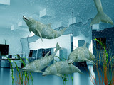 the group of dolphins in modern office interior (3D) poster