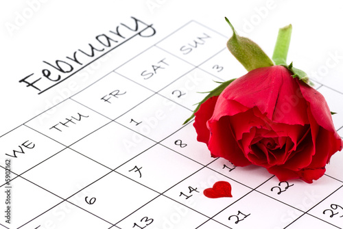 red rose on calendar valentines day