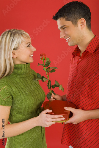 Handsome man is giving beautiful woman rose and chocolates.