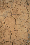 Surriscaldamento - Terreno arido poster