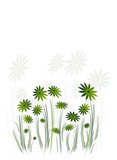illustration drawing of background. Green floral stationery. poster