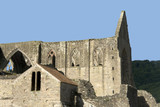 Wales monmouthshire the ruins TINTERN ABBEY. poster