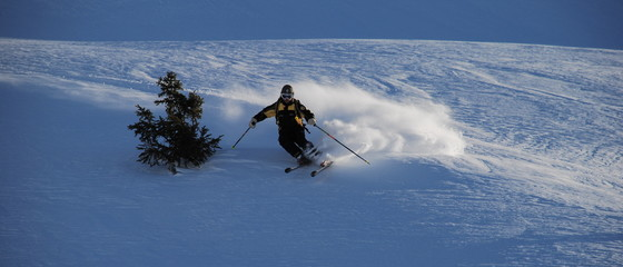 ski de poudre