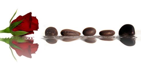 rose et galets