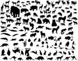 vector animals silhouette