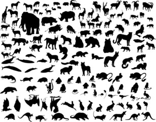 vector animals silhouette