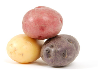 Potato of Various Colors