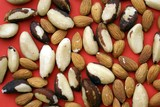 almonds and brazil nuts. nuts. poster