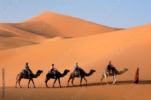 canvas print picture Camel caravan going the sand dunes in the Sahara Desert