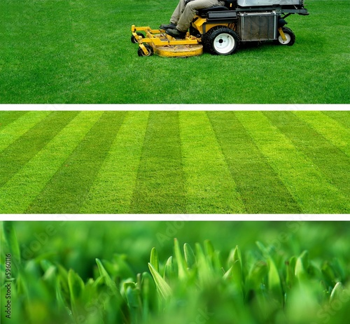 lawn mowing - 5960116