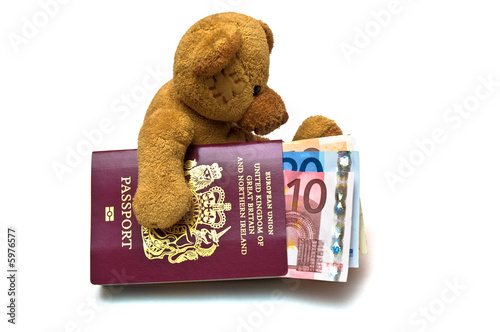 Teddy Bear with Cash and Passport