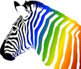 Fototapety Zebra a colori