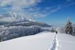 Winter heaven