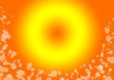 sole e fiori poster