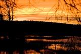 Wetland Sunrise poster