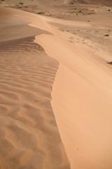 désert al ain