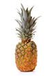 Pineapple against white background