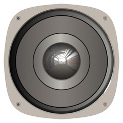 A generic home or car audio speaker.