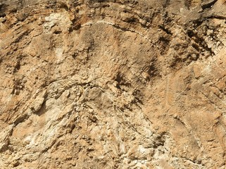 estromatolitos la romana alicante