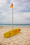 iconic surf rescue board and swimming flags poster
