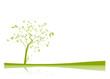 vecteur série - arbre vectoriel au printemps