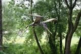 flying dinosaur-