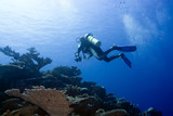 Diver with camera in deep and bubbles. Underwater photographer poster