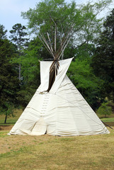 Native American Teepee on the edge of a meadow