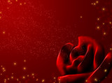 Background - an abstract red rose and shining stars poster