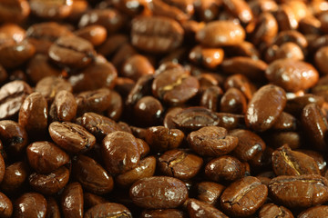 delicious shiny freshly roasted coffee beans close-up