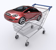 Shopping Cart (Buying Car)