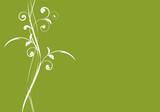 Fototapety vecteur série - courbes vectorielles de printemps
