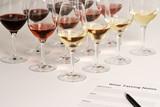 Wine Tasting - 6086774