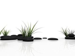 gras und steine © Sebastian Kaulitzki