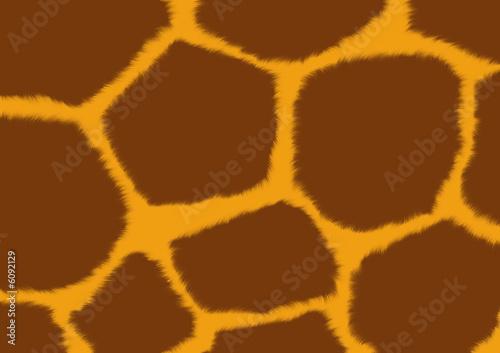 poster of Texture - a fluffy skin of a giraffe