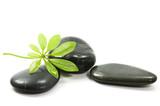 Therapy stones - 6093996